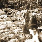 Curiosidades sobre 3 mercados históricos de Madrid