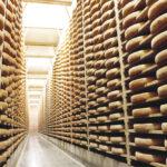 bodega afinador1 150x150 - Le fromage Comté : L'Héritage sacré d'un peuple solidaire
