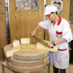 cortando queso 150x150 - Queso Comté:  La herencia sagrada de un pueblo solidario