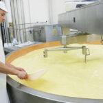 maestro quesero1 150x150 - Le fromage Comté : L'Héritage sacré d'un peuple solidaire