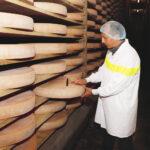 sonda queso1 150x150 - Le fromage Comté : L'Héritage sacré d'un peuple solidaire