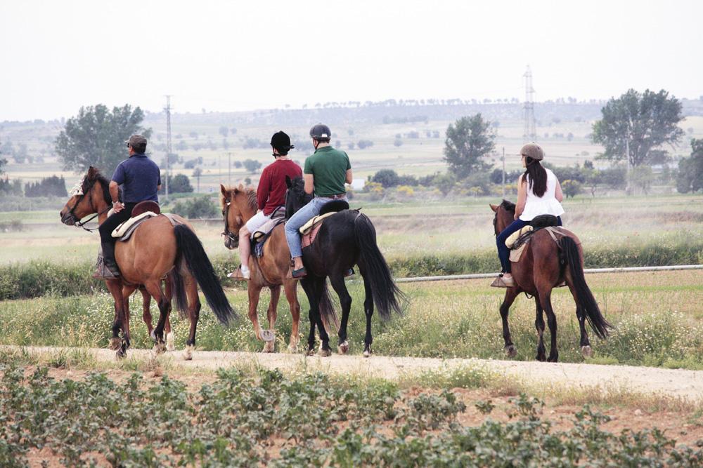 Paseo a caballo en Cabezón de Pisuerga.
