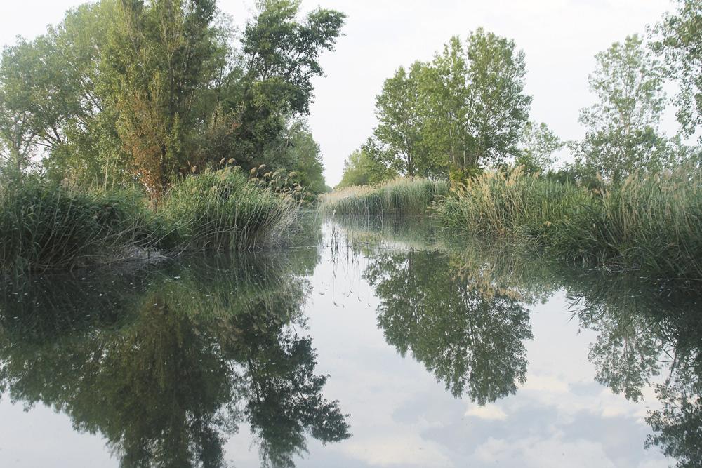 Paisaje del Canal de Castilla
