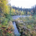 IMG 3209 150x150 - Laponia finlandesa, donde la naturaleza muestra su estado más puro