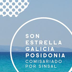 Viajamos a Formentera para redescubrir la isla y apoyar Save Posidonia Project