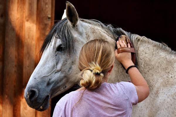 dentro6 - Bautismo hípico para los peques en Madrid Horse Week