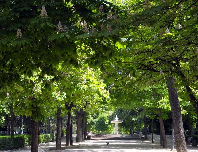 Los principales parques de Madrid, cerrados por inspección del arbolado