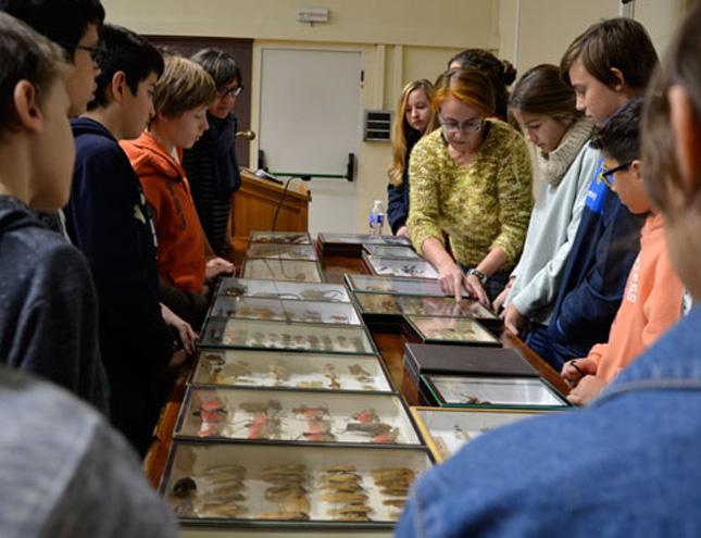 El Museo de Ciencias Naturales abre las puertas a sus grandes colecciones