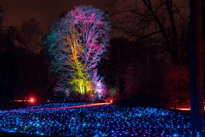 christmas garden madrid 2 e1572443324582 - Luces de colores y hadas te invitan a un paseo por el Jardín Botánico