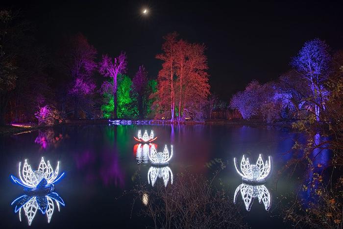 christmas garden madrid 5 e1572443366715 - Luces de colores y hadas te invitan a un paseo por el Jardín Botánico