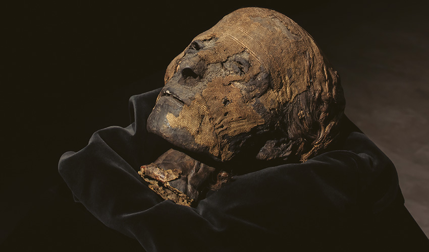 La cabeza de una momia, protagonista de Feriarte 2019