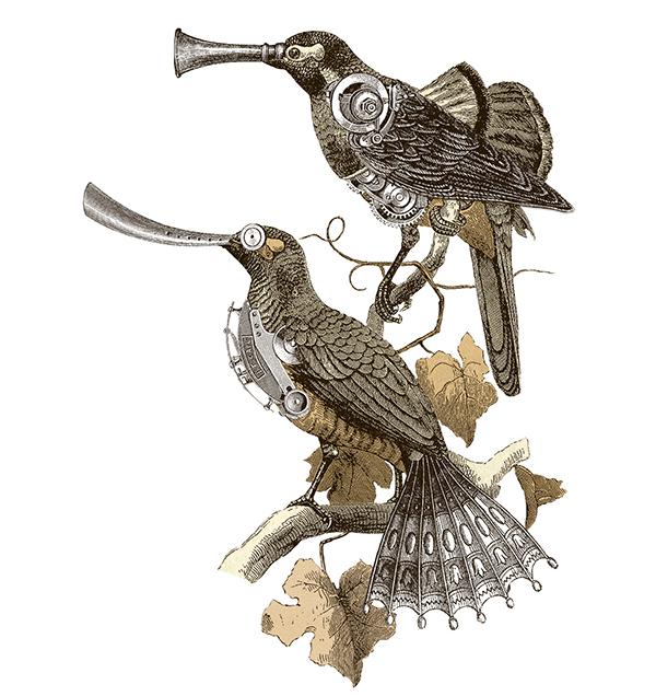 """aves doradas - """"En mi obra critico a la sociedad por su falta de fantasía"""""""