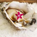 Restaurante Bichopalo: fusión, creatividad y chispa en un menú de 35 €