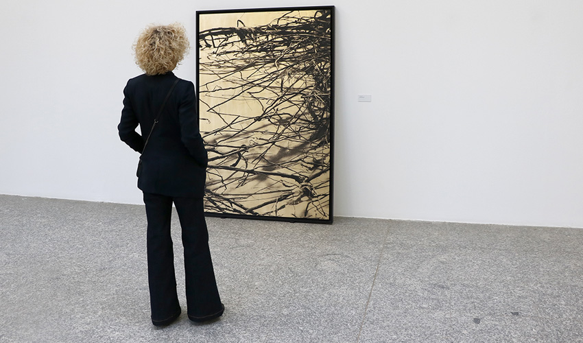 Una exposición de la artista Paula Anta descubre el secreto sagrado del caos