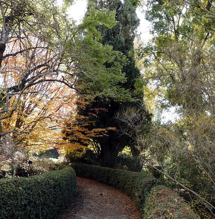 Jardín Botánico de Madrid 013 - Un paseo en 15 fotos por el Jardín Botánico de Madrid