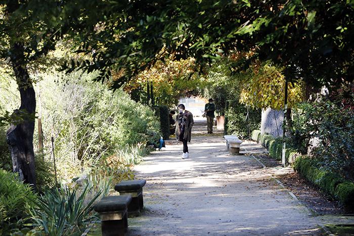 Jardín Botánico de Madrid 04 - Un paseo en 15 fotos por el Jardín Botánico de Madrid