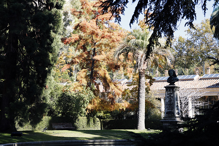 Jardín Botánico de Madrid 06 - Un paseo en 15 fotos por el Jardín Botánico de Madrid