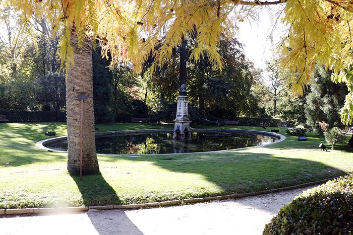 Jardín Botánico de Madrid 08 - Un paseo en 15 fotos por el Jardín Botánico de Madrid