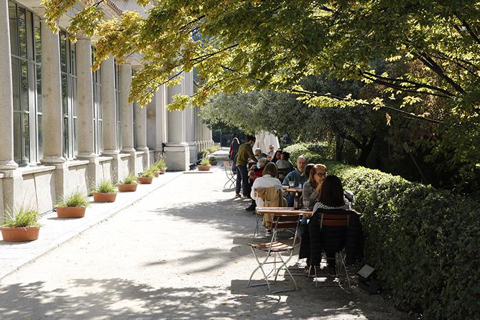 Jardín Botánico de Madrid 09 - Un paseo en 15 fotos por el Jardín Botánico de Madrid