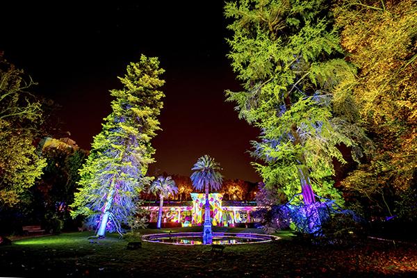 Jardín Botánico de Madrid Naturaleza Encendida 01 - El Jardín Botánico de Madrid ofrece un espectáculo de luces para celebrar sus 265 años