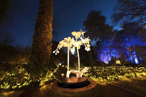Jardín Botánico de Madrid Naturaleza Encendida 02 - El Jardín Botánico de Madrid ofrece un espectáculo de luces para celebrar sus 265 años