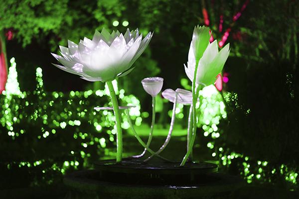 Jardín Botánico de Madrid Naturaleza Encendida 05 - El Jardín Botánico de Madrid ofrece un espectáculo de luces para celebrar sus 265 años