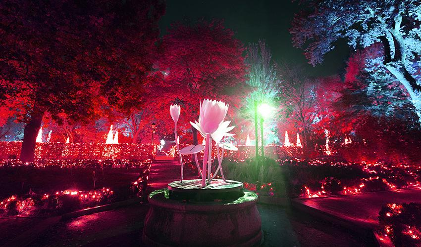 El Jardín Botánico de Madrid ofrece un espectáculo de luces para celebrar sus 265 años
