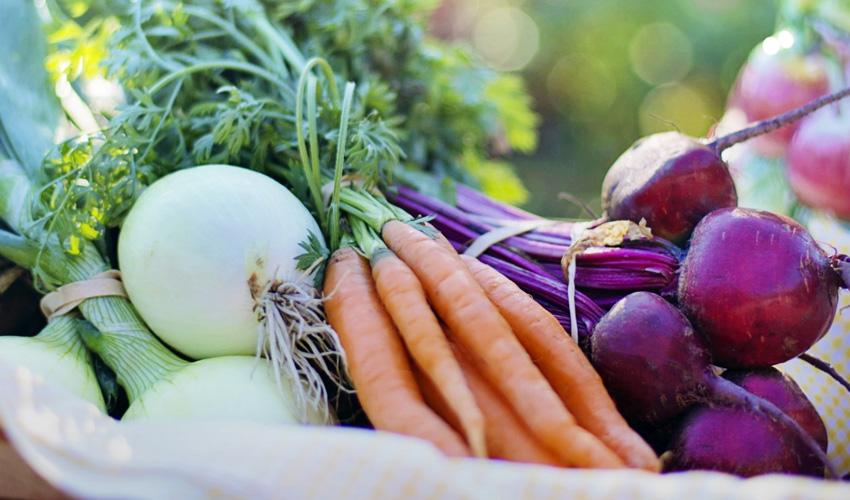 Cita en el mercado para productores ecológicos y locales de Madrid