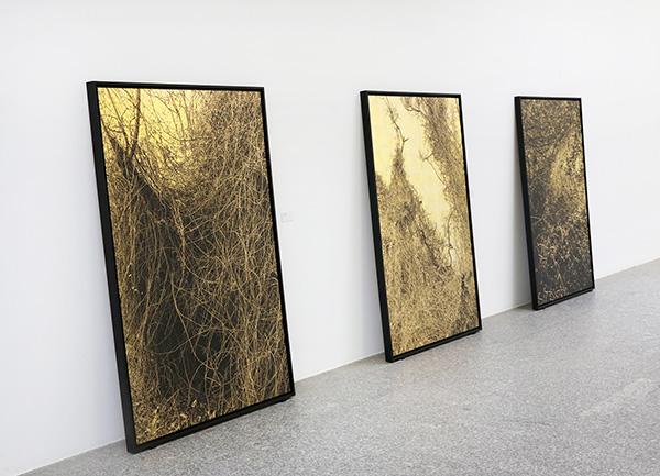 Paula ANTA 02 - Una exposición de la artista Paula Anta descubre el secreto sagrado del caos