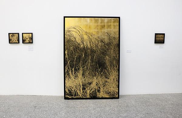 Paula ANTA Nudos 1 - Una exposición de la artista Paula Anta descubre el secreto sagrado del caos