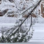 Guía para mejorar la situación de los edificios y las viviendas tras la nevada en Madrid
