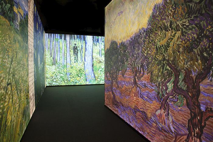 Carolien Sikkenk. Meet Vincent van Gogh Experience - Meet Vincent van Gogh: el paseo más íntimo por la obra y vida del pintor holandés